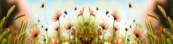фартук стеклянный цветы