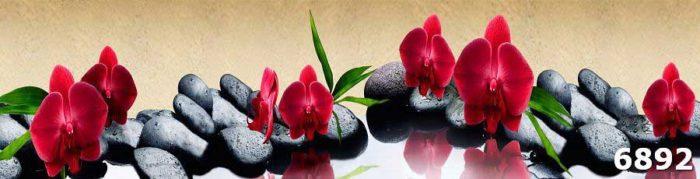 Фартук для кухни Орхидея