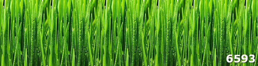 кухонный фартук трава