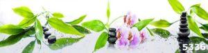 Cтеклянный фартук Орхидеи