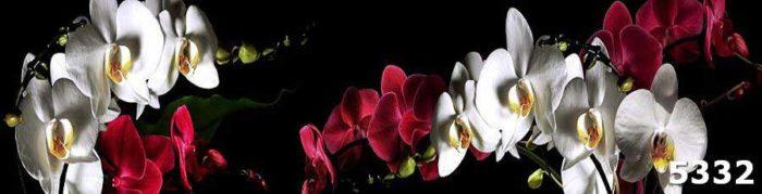 Скинали для кухни Орхидеи