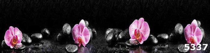 скинали орхидеи на камнях