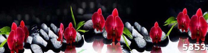 Фартук на кухню Орхидея на камнях