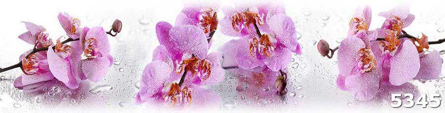 Купить фартук на кухню орхидеи