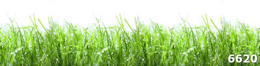 Фото фартука для кухни Роса на траве