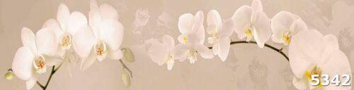 стеклопанель Орхидеи