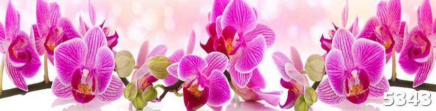 Стеклянные панели для кухни с орхидеями