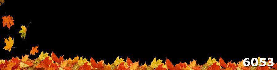 Кухонный фартук из закаленного стекла Осенние листья