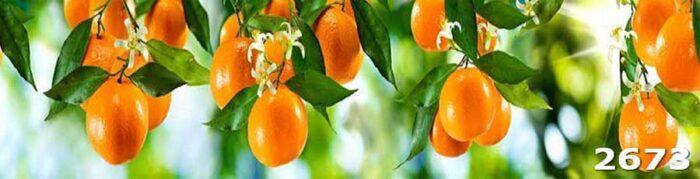 Фартук в кухне Апельсины