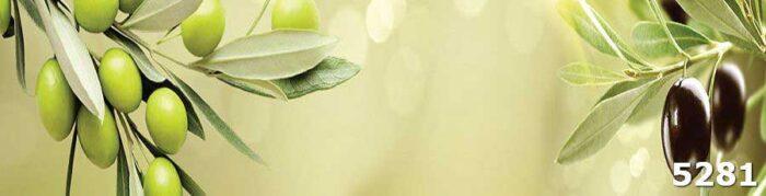 Каленое стекло на фартук Ветвь оливы