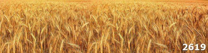 Фартук для кухонного гарнитура скинали Пшеница